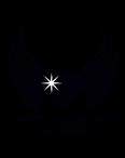 White Diamond Real Estate